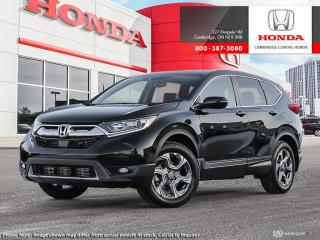 Used 2019 Honda CR-V EX-L for sale in Cambridge, ON