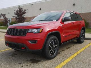 Used 2019 Jeep Grand Cherokee Trailhawk / GPS Navigation / Back Up Camera for sale in Edmonton, AB