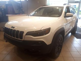 Used 2020 Jeep Cherokee Upland for sale in Ottawa, ON