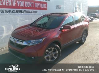 Used 2019 Honda CR-V EX $228 BI-WEEKLY - $0 DOWN for sale in Cranbrook, BC