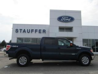Used 2013 Ford F-150 Lariat for sale in Tillsonburg, ON