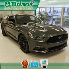 Used 2017 Ford Mustang EcoBoost Premium w/Leather, Heated/Cooled Seats, Backup Camera for sale in Saskatoon, SK