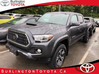 Used 2019 Toyota Tacoma SR5 V6 for sale in Burlington, ON