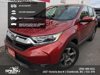 Used 2019 Honda CR-V EX-L EXTENDED WARRANTY, NO ACCIDENTS, PAINT PROTECTION FILM, ALL SEASON MATS - $224 BI-WEEKLY - $0 DOWN for sale in Cranbrook, BC
