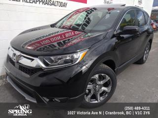 Used 2019 Honda CR-V EX-L $243 BI-WEEKLY - $0 DOWN for sale in Cranbrook, BC