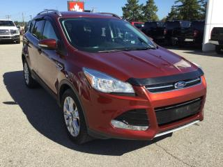 Used 2016 Ford Escape Titanium | Accident Free | for sale in Harriston, ON
