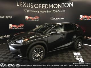 Used 2020 Lexus NX 300 Premium Package for sale in Edmonton, AB