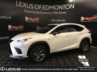 Used 2020 Lexus NX 300 F Sport Series 1 (Offered Until 09.2019) for sale in Edmonton, AB