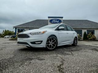 Used 2016 Ford Focus SE- SPORT PKG- WINTER PKG- BLUETOOTH BACKUP CAM for sale in Essex, ON