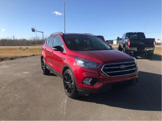 Used 2019 Ford Escape TITANM for sale in Fort Saskatchewan, AB