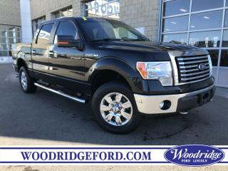 Used 2011 Ford F-150 XLT for sale in Calgary, AB