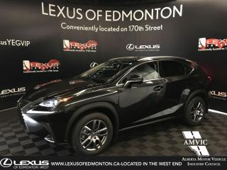 Used 2020 Lexus NX 300 Premium Package (Offered Until 09.2019) for sale in Edmonton, AB