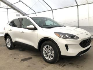Used 2020 Ford Escape SE for sale in Meadow Lake, SK