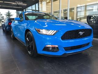 Used 2017 Ford Mustang ECOBOOST, KEYLESS IGNITION, CRUISE CONTROL, PERFORMANCE MONITORING for sale in Edmonton, AB