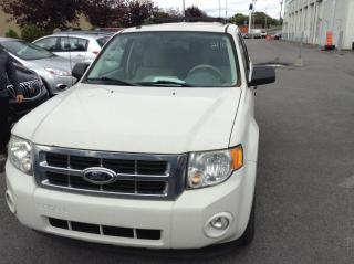 Used 2011 Ford Escape 4 portes, traction avant V6 boîte automa for sale in Montréal, QC
