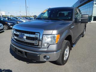Used 2014 Ford F-150 XLT,4X4,MAGS,CAMERA,CRUISE,A/C for sale in Mirabel, QC