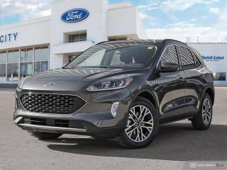 Used 2020 Ford Escape SEL for sale in Winnipeg, MB