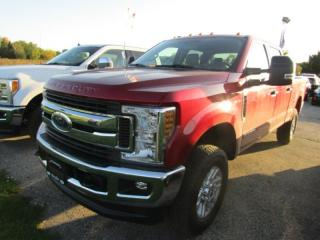 New 2019 Ford F-250 Super Duty SRW XLT for sale in Tillsonburg, ON