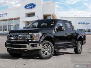 Used 2019 Ford F-150 XLT for sale in Winnipeg, MB