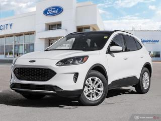 Used 2020 Ford Escape SE for sale in Winnipeg, MB