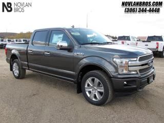Used 2019 Ford F-150 PLATINUM for sale in Paradise Hill, SK