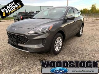 New 2020 Ford Escape SE 4WD  - Navigation - Adaptive Cruise for sale in Woodstock, ON