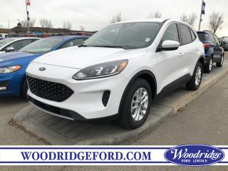 Used 2020 Ford Escape SE for sale in Calgary, AB