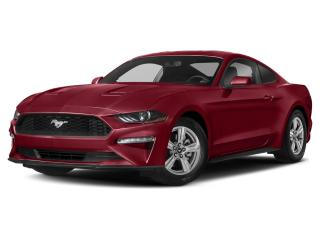 New 2019 Ford Mustang GT for sale in Winnipeg, MB