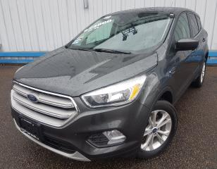 Used 2019 Ford Escape SE 4WD *HEATED SEATS* for sale in Kitchener, ON