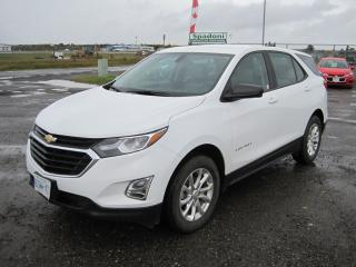 Used 2018 Chevrolet Equinox LS for sale in Thunder Bay, ON