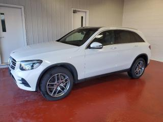 Used 2019 Mercedes-Benz GL-Class GLC 300 for sale in Pembroke, ON