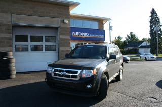 Used 2010 Ford Escape XLT for sale in Nepean, ON