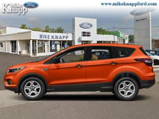 Used 2019 Ford Escape SE FWD  - Heated Seats for sale in Welland, ON