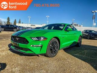 Used 2019 Ford Mustang GT for sale in Edmonton, AB