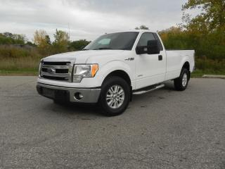 Used 2013 Ford F-150 XLT for sale in Brantford, ON
