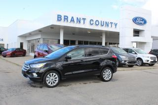 Used 2019 Ford Escape SEL for sale in Brantford, ON