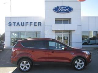 Used 2016 Ford Escape SE for sale in Tillsonburg, ON