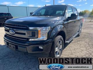 Used 2019 Ford F-150 XLT  - Navigation - Sunroof for sale in Woodstock, ON