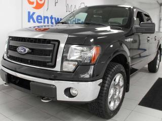 Used 2014 Ford F-150 F-150 black and grey like an old school movie for sale in Edmonton, AB