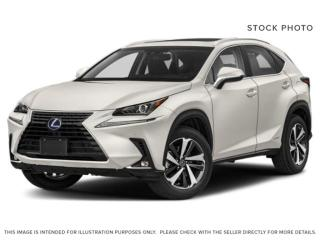 Used 2020 Lexus NX 300h for sale in Edmonton, AB