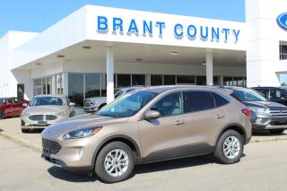 Used 2020 Ford Escape SE for sale in Brantford, ON