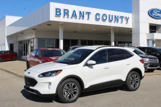 Used 2020 Ford Escape SEL for sale in Brantford, ON
