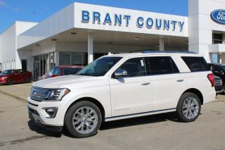 Used 2019 Ford Expedition Platinum for sale in Brantford, ON
