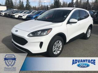 Used 2020 Ford Escape SE Heated Front Seats - Intelligent Access for sale in Calgary, AB
