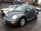Photo of Blue 2004 Volkswagen New Beetle
