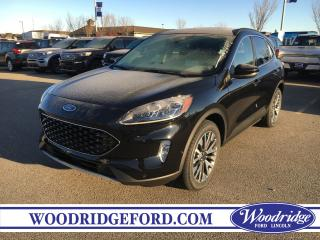 New 2020 Ford Escape Titanium for sale in Calgary, AB
