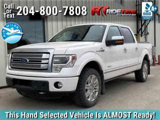 Used 2013 Ford F-150 PLATINUM for sale in Winnipeg, MB