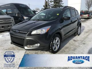 Used 2016 Ford Escape SE Clean Carfax - Remote Keyless Entry for sale in Calgary, AB