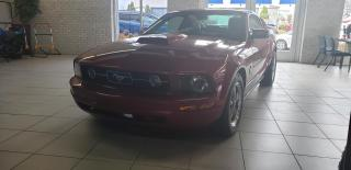 Used 2006 Ford Mustang Coupé 2 portes/CUIR for sale in Drummondville, QC