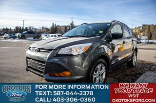 Used 2016 Ford Escape LOW KMS, ONE OWNER, NO ACCIDENTS, CARGO UTILITY PACKAGE, REMOTE ENTRY, A/C for sale in Okotoks, AB